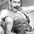 freddie mercury richard young 4