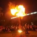 fire garden 10