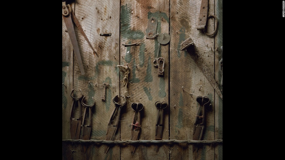 Shears and other tools stored on a wooden wall at  Brackley Farm, located in the Scottish village of Dalmally in Argyll and Bute.