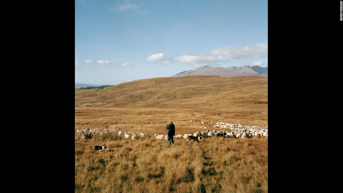 "MacPherson with her animals in Dalmally. ""There are three mountains on this farm, and they go up over 3,000 feet,"" she told Gerrard. ""The sheep go up into those hills and we won't see them until the summer."""