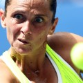 Vinci close up