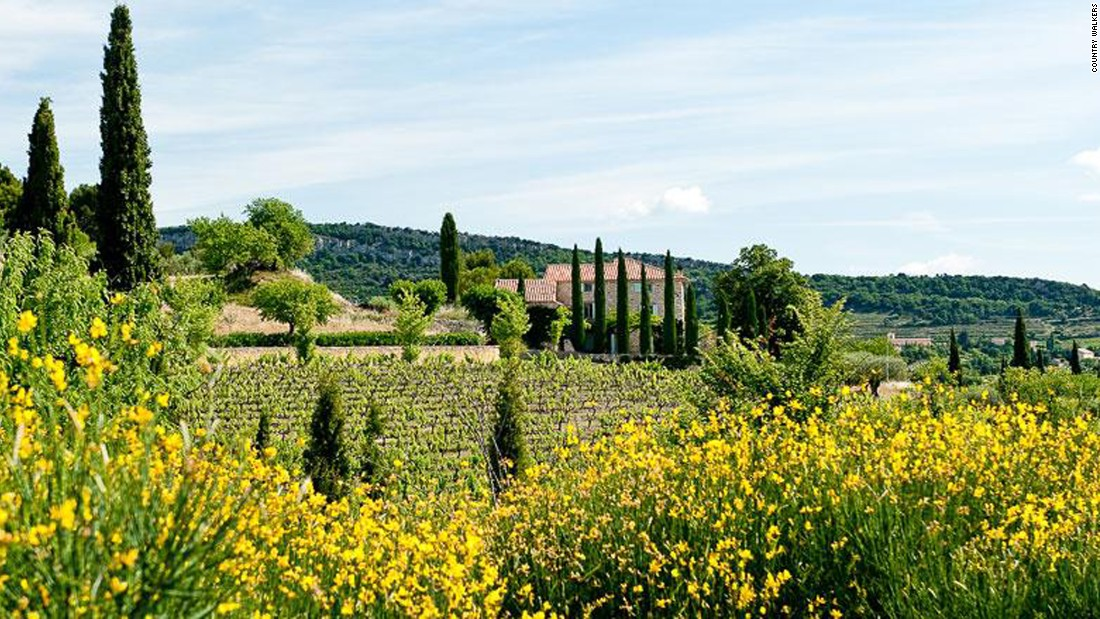 Travelers can walk through the textured fields of Provence with Country Walkers, followed by an evening with a local cheese-maker, who pairs a variety of cheeses with the region's wines.