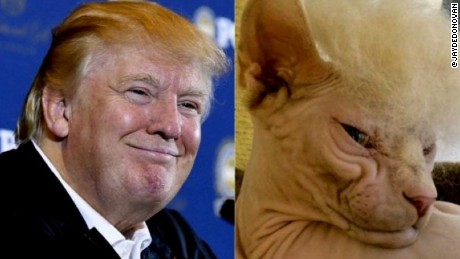 donald trump body double moos