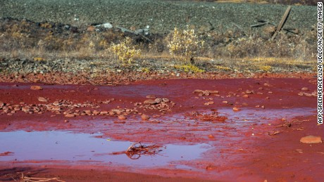 Norilsk Nickel, the world's largest nickel producer, said Monday that a dike at its Nadezhda plant overflowed, coloring the Daldykan River blood red.
