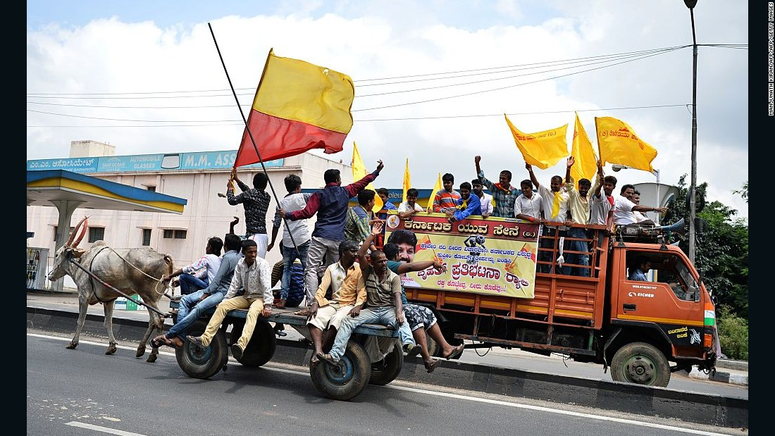 Pro-Karnataka activists wave the Karnataka flag as they ride on an ox-drawn cart during a statewide strike in Bangalore.