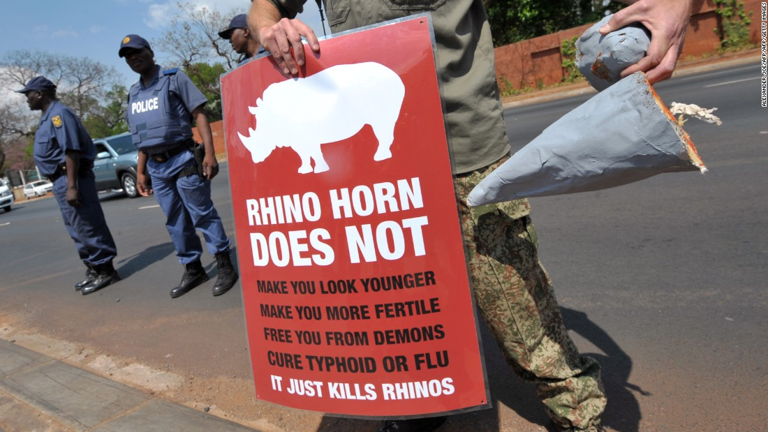 "A South African protester holds a sign and a fake rhino horn during a demonstration outside the Chinese embassy in Pretoria, on September 22, 2011. At least <a href=""http://edition.cnn.com/2016/03/10/africa/africa-rhinos-record-poaching/index.html"">1,338 rhinos were killed last year</a> according to data compiled by one international group. Overall the number of rhinos killed has increased in the last six years, but there was one ray of hope: killings in South Africa decreased for the first time in years."