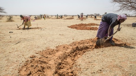 Digging half moons for water conservation in Niger.