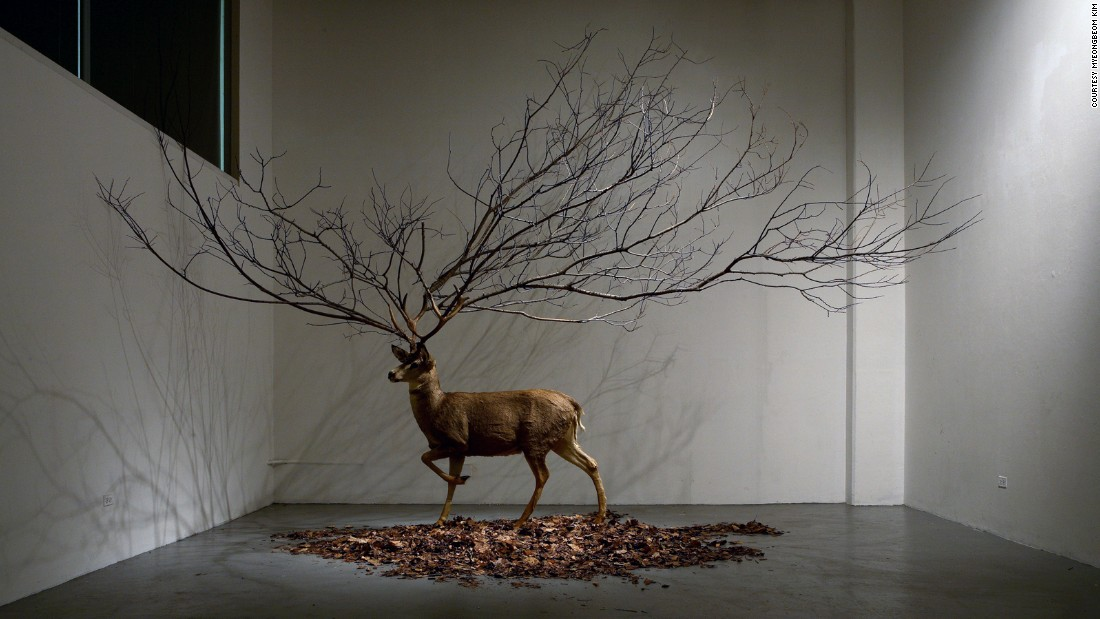 "Expanding on the theme of the natural, Korean artist <a href=""http://www.myeongbeomkim.com/en/"" target=""_blank"">Myeongbeom Kim</a> typically works with trees and other plant life (and, in this case, a taxidermy deer). Kim has had solo shows in South Korea, China, France, Puerto Rico and the US."