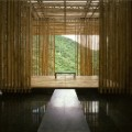 Great (Bambool) Wall 3