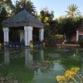 jardin majorelle ysl 7
