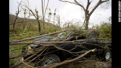 A vehicle sits covered in toppled tree limbs in Camp Perrin, a district of Les Cayes, Haiti.