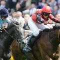 hayley moore racing battle