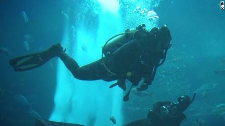 amputee scuba diver ctw pkg_00000000