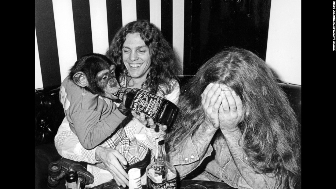 Drummer Artimus Pyle, right, and Collins party with a chimpanzee.