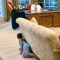 13 obama presidency