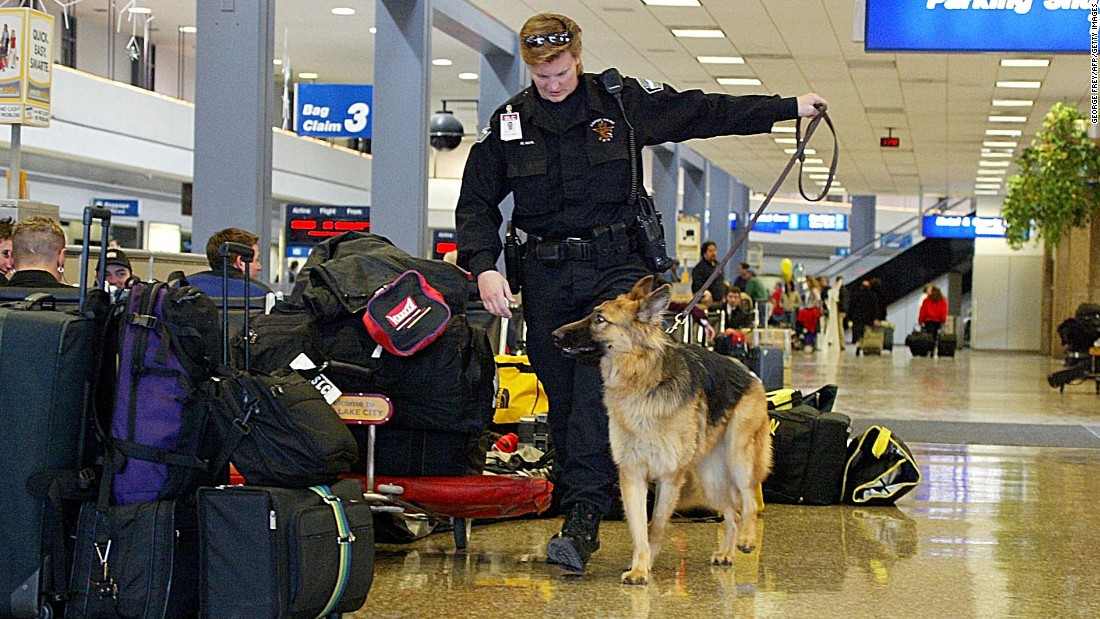A bomb-sniffing dog and his handler from the Salt Lake City Airport Police check bags at Salt Lake City International Airport on December 12, 2001.