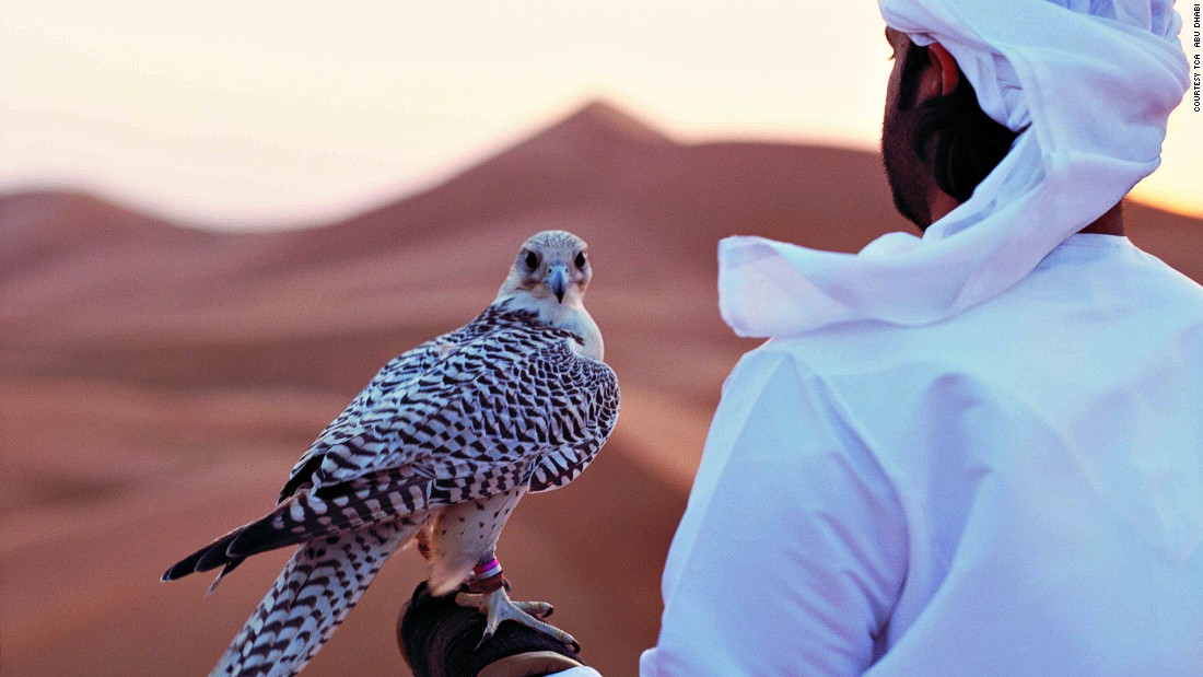 A tradition long practiced by the Bedouin nomads who've roamed the deserts of Abu Dhabi and beyond for centuries, falconry is today a popular way to entertain visitors.