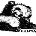 inktober panda nanini