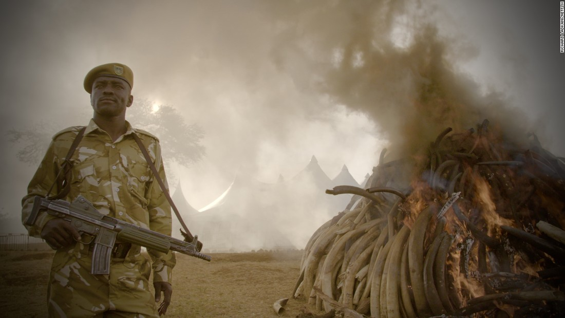 "Original Netflix documentary ""The Ivory Game"" goes inside the illegal ivory trade to put Africa's elephant poaching crisis back on the agenda."