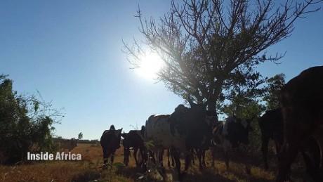 inside africa madagascar bara tribe spc b_00015506
