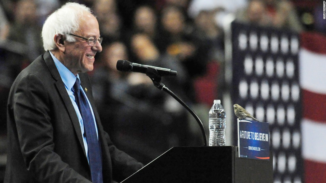 "Sanders smiles at a bird after <a href=""http://www.cnn.com/2016/03/26/politics/bernie-sanders-bird-drawing-together/"" target=""_blank"">it landed on his podium</a> in Portland, Oregon, on March 25, 2016."