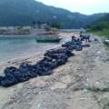 Hong Kong ocean pollution going green