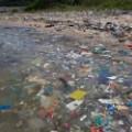 going green hong kong ocean pollution 7