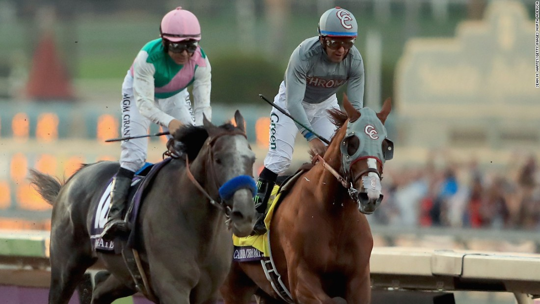 Arrogate (left) capped a triumphant debut season by winning the 2016 Breeders' Cup Classic in a dramatic finish.
