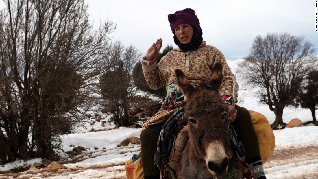 If you're skiing in Morocco, expect to see donkeys and mules. They'll be loaded with supplies for treks, and if you're skiing in Oukaimeden you can catch a ride on one to the lifts.