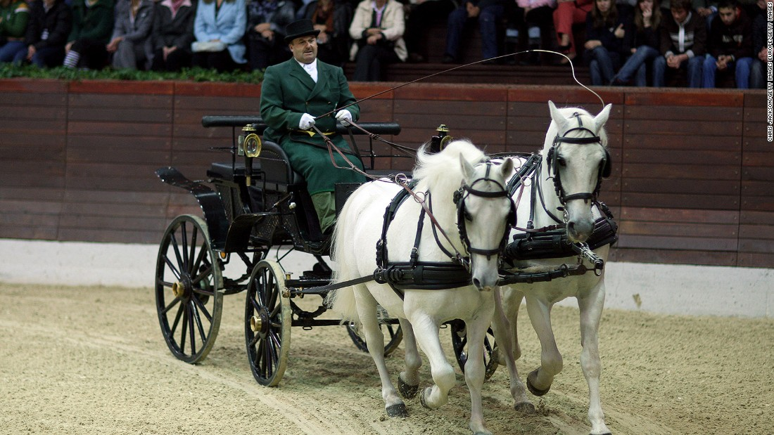 Lipizzaner horses are one of Slovenia's most well-known exports.
