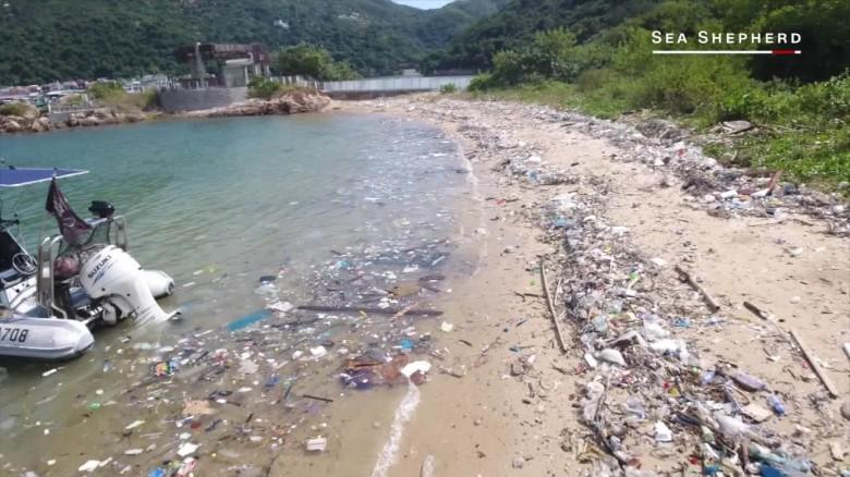 hong kong trashed ocean marsh orig _00000115