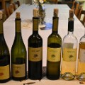 Slovenia travel wine3