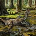 China dinosaur Tongtianlong limosus