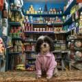 03 favelagrafia photos Elana Paulino