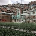 07 favelagrafia photos Jessica Higino