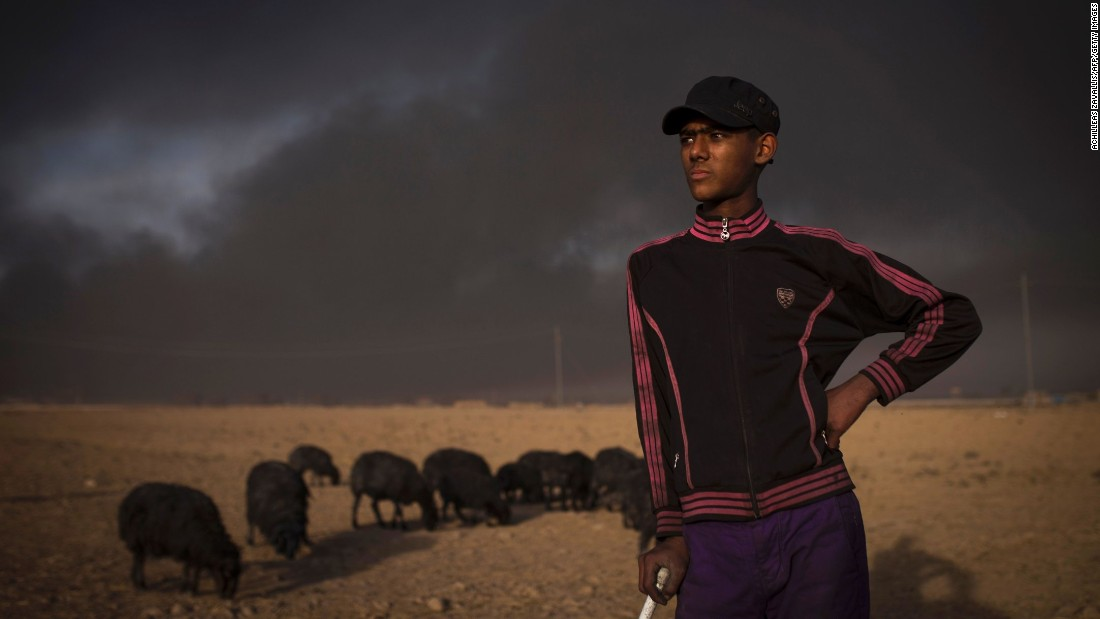 A young shepherd watches over his flock of sheep near the town of Qayyara on November 12. The sheep were blackened by smoke after oil wells were set ablaze by ISIS militants.