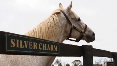 old friends racing horse retirement winning post november spc_00010326.jpg