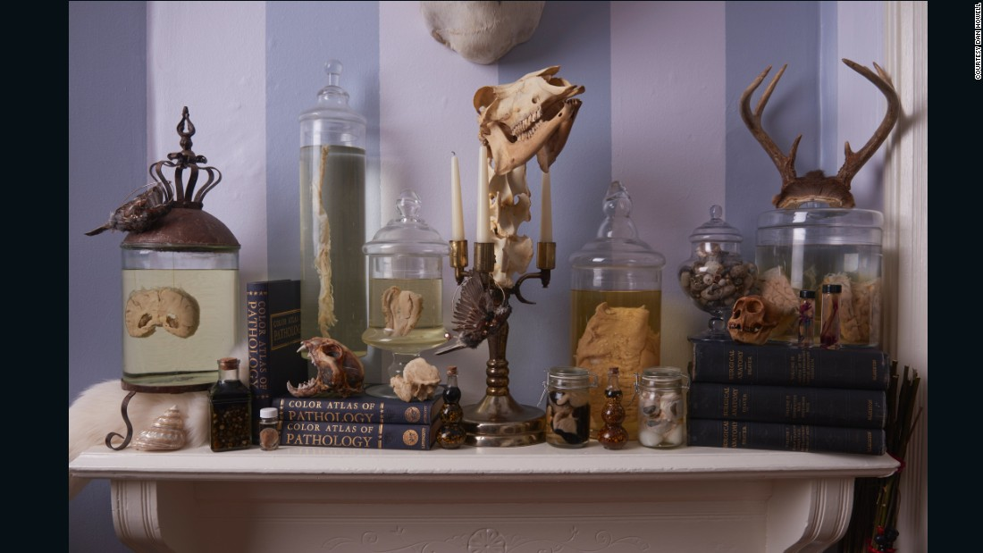 """Nicole Angemi is a pathologist's assistant with almost <a href=""""https://www.instagram.com/mrs_angemi/"""" target=""""_blank"""">a million Instagram followers</a>. She started her collection with old specimens that were being disposed at a hospital's morgue."""