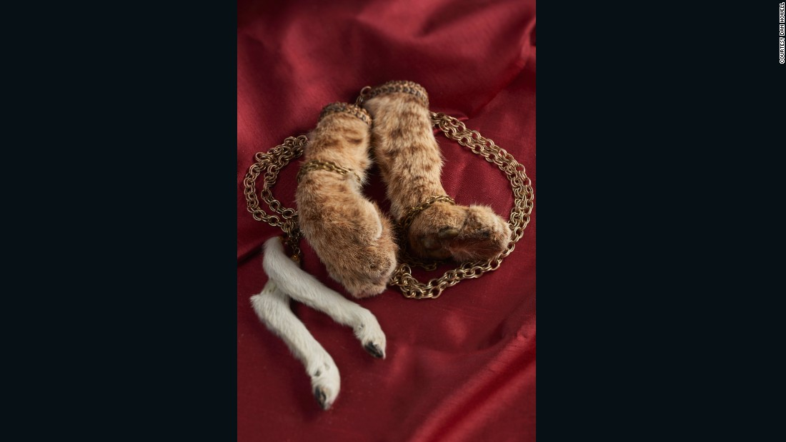 These necklaces -- one of bob cat paws, the other of lamb legs -- belong to Danielle Deveroux, an artist and the owner of the Creeper Gallery in New Hope, Pennsylvania.