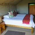 Woodbury-Tented-Camp