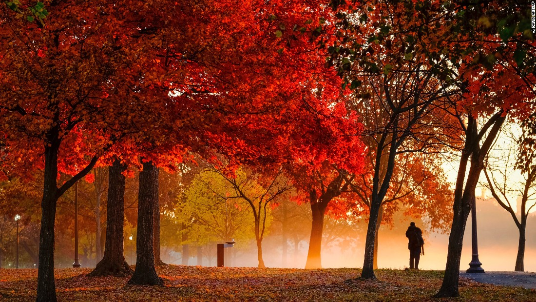 Fall guy. A photographer stops to capture the early morning ground fog on the National Mall in Washington.<br />