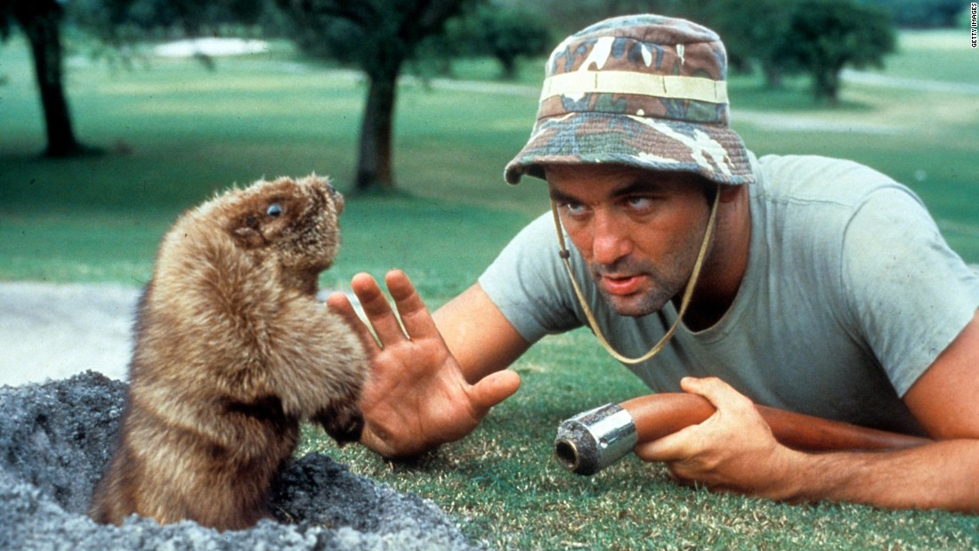 "<strong>""Caddyshack"" </strong>: The gopher is as big a star as Bill Murray in this 1980 comedy, which is one of Murray's most famous films. <strong>(Amazon Prime) </strong>"