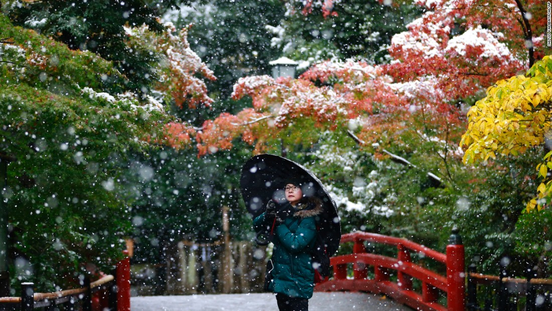 "A person takes a photo in the snow at the Tsurugaoka Hachimangu Shrine in Kamakura, Japan, on Thursday, November 24. <a href=""http://www.cnn.com/2016/11/17/world/gallery/week-in-photos-1118/index.html"" target=""_blank"">See last week in 31 photos</a>"