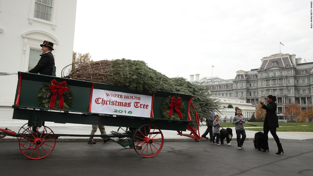 First lady Michelle Obama, accompanied by her nephews Austin and Aaron Robinson, receives the official White House Christmas tree on Friday, November 25.