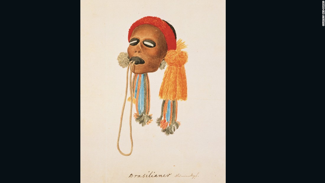 Prince Maximilian De Wied of Germany sketched this shrunken head during an expedition to Brazil that lasted from 1815 and 1817. During that trip, he collected and cataloged thousands of specimens.