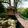 Blue Forest Treehouse - Cliffside Lodge (3)