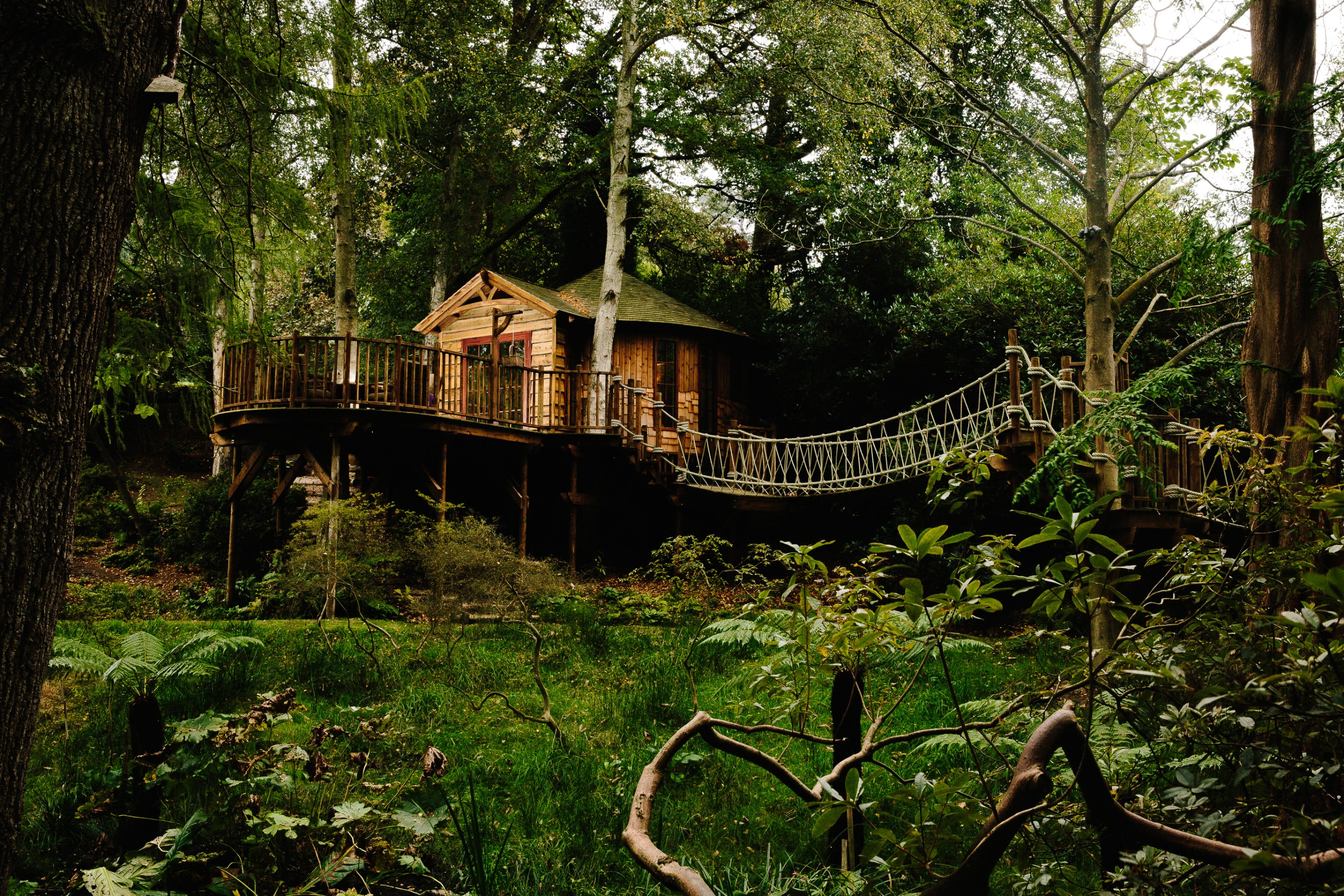 is the treehouse the of sustainable living cnn style