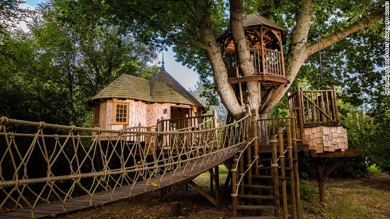 Blue Forest's Timbertop Hangout Treehouse