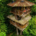 James Lozeau treehouse