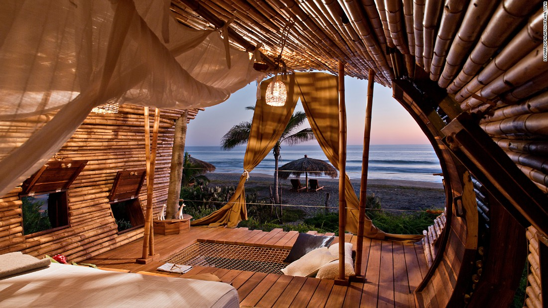 "The tree house suite is ocean-facing and surrounded by palm trees. <a href=""http://www.playaviva.com/"" target=""_blank"">Playa Viva</a> markets itself as a resort ""Where your vacation meets your values""."